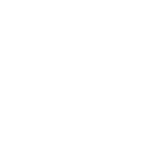 Snowshoeing-white
